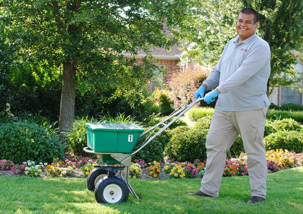 lawn fertilization dallas texas