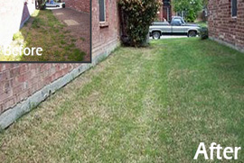 lawn care maintenance denton county tx
